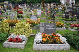 Recurso cementerio con flores oct 16