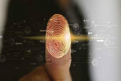 protección de la identidad digital