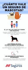 ¿Cuánto cuesta un seguro para mascotas?