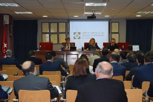 El Consejo General celebra su tercer Pleno del año