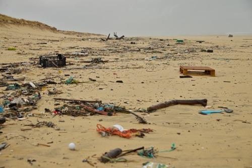 Día Mundial de los Océanos: el Observatorio DKV presenta un monográfico sobre el plástico