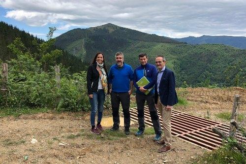 Helvetia reforesta 20 hectáreas de bosque con el proyecto Tu seguro verde
