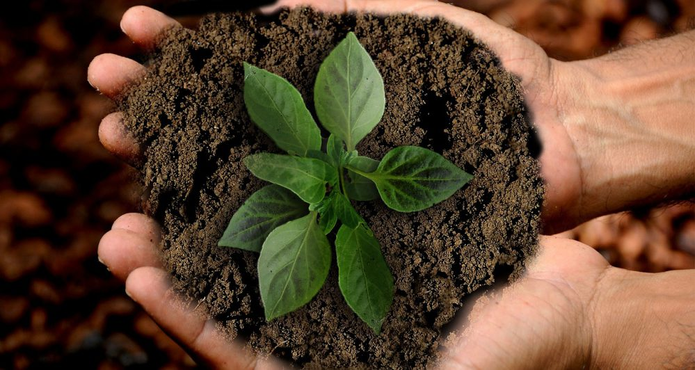 inversión sostenible y sostenibilidad. Noticias de seguros