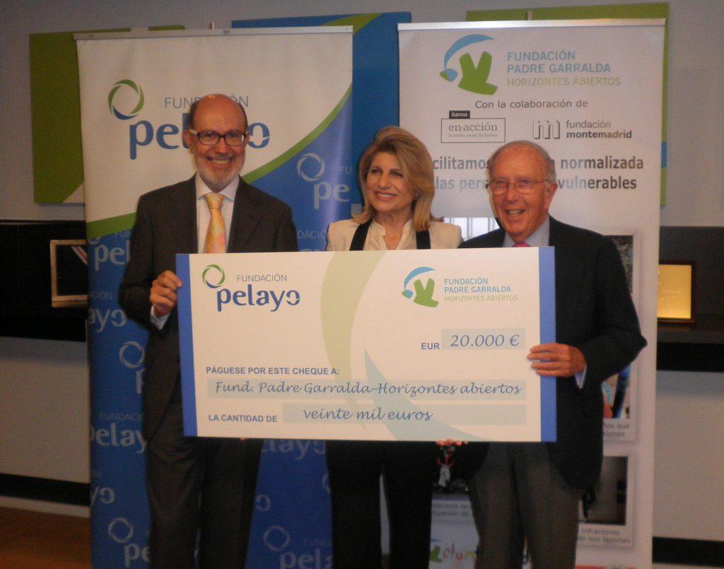 Fundación Pelayo proyectos de seguros