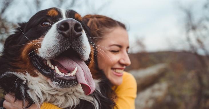 Mapfre Purina seguro de mascotas noticias de seguros