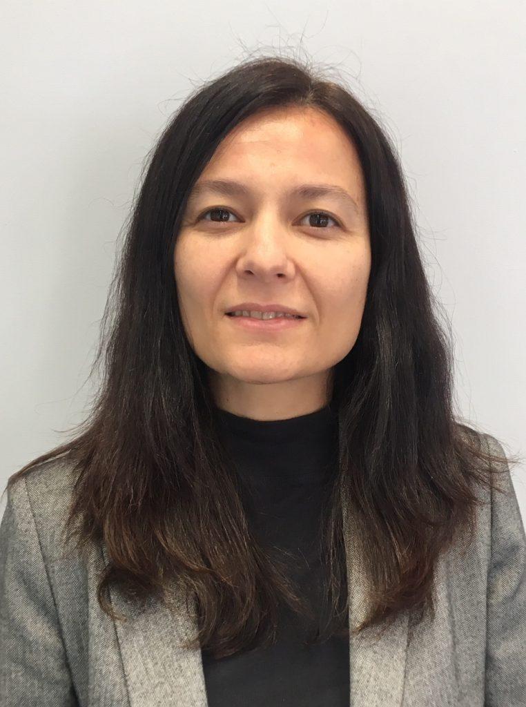 RSA Group Isabel Allo, noticias de seguros
