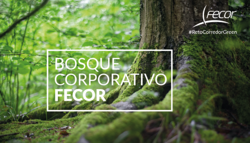 Bosque Corporativo Fecor noticias de seguros