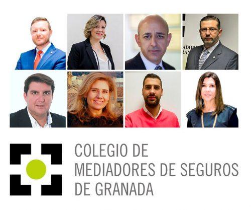 Colegio de Granada nueva junta directiva. Noticias de seguros.