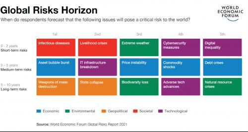 Informe de riesgos globales Noticias de seguros