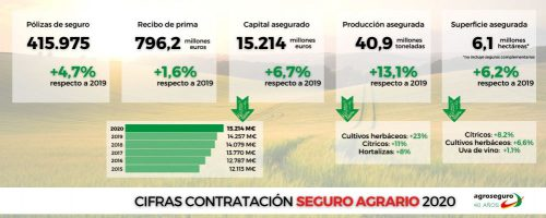 Agroseguro resultados 2020. Noticias de seguros