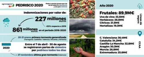 Impacto del pedrisco en Agroseguro. Noticias de seguros