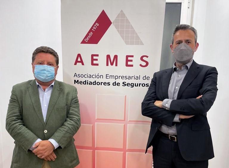 Aemes mantiene un encuentro con el Consejo General. Noticias de seguros.
