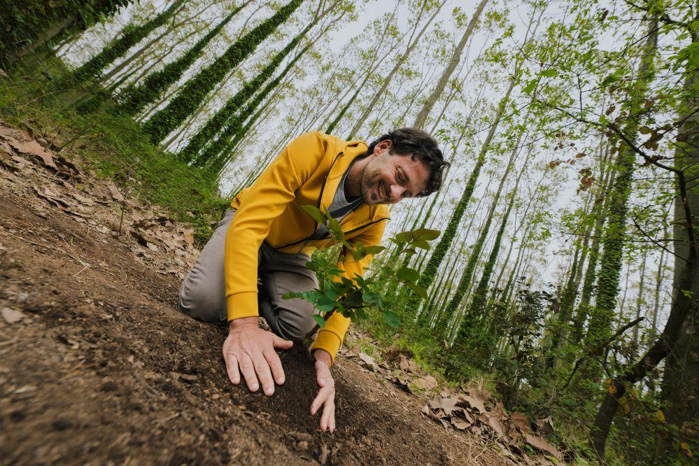 Zurich plantará un árbol por cada póliza vendida. Noticias de seguros