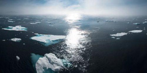 La Allianz EcoWeek se centra en la sostenibilidad. Noticiasd e seguros